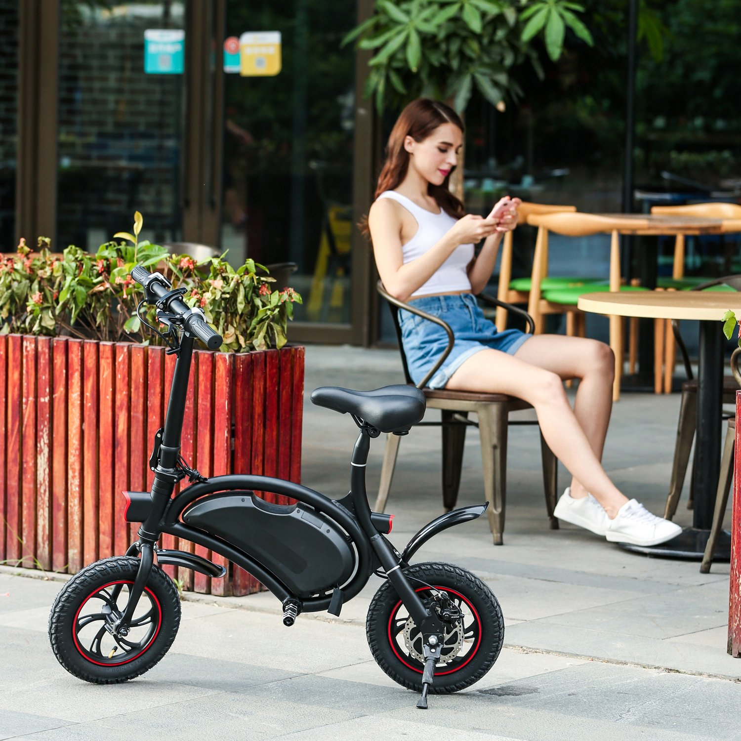 Shaofu 350W Cheapest Electric Bike