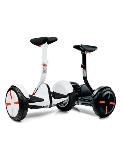 Ninebot by Segway miniPRO Review 2019 - Electric Travel